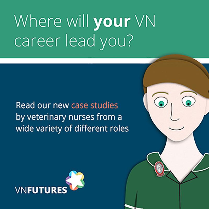 VN careers leaflet