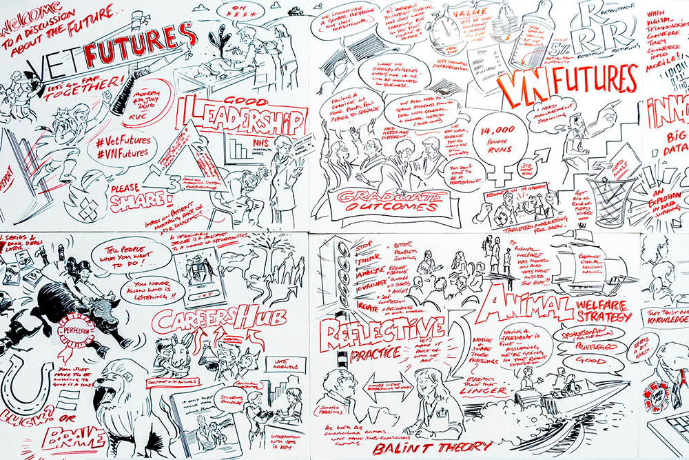 Vet Futures Summit sketch